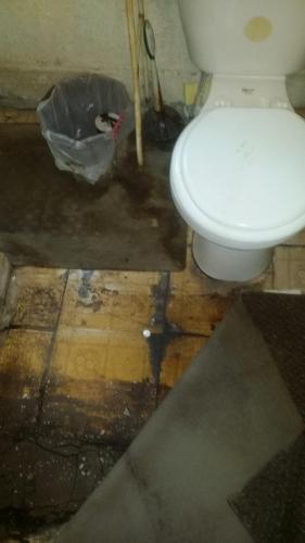 Floor Damage Around Toilet